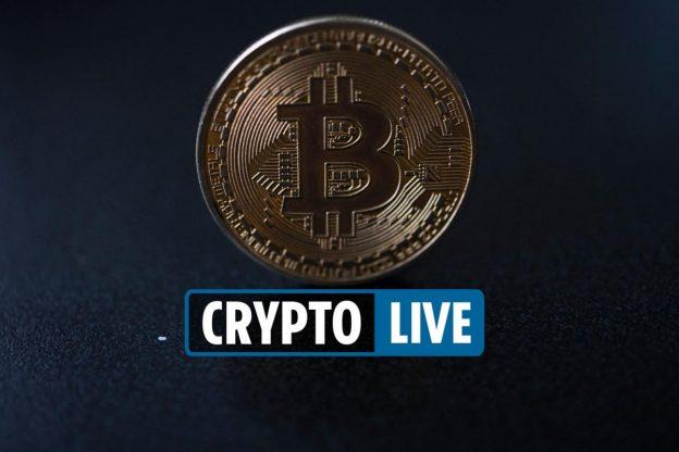 Berita Cryptocurrency langsung – Bitcoin turun 10% di bawah $43.000 karena harga crypto untuk Shiba Inu & Ethereum terdaftar di Coinbase
